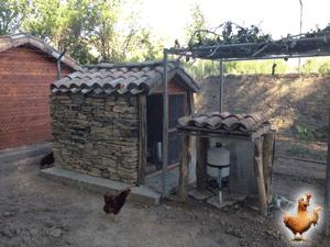 construir-un-gallinero