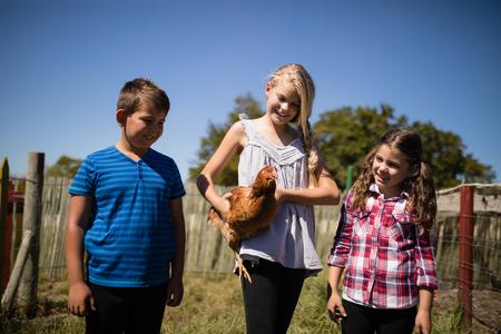 Niños con gallina